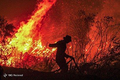 ادامه آتش سوزی وسیع در جنگل های اندونزی