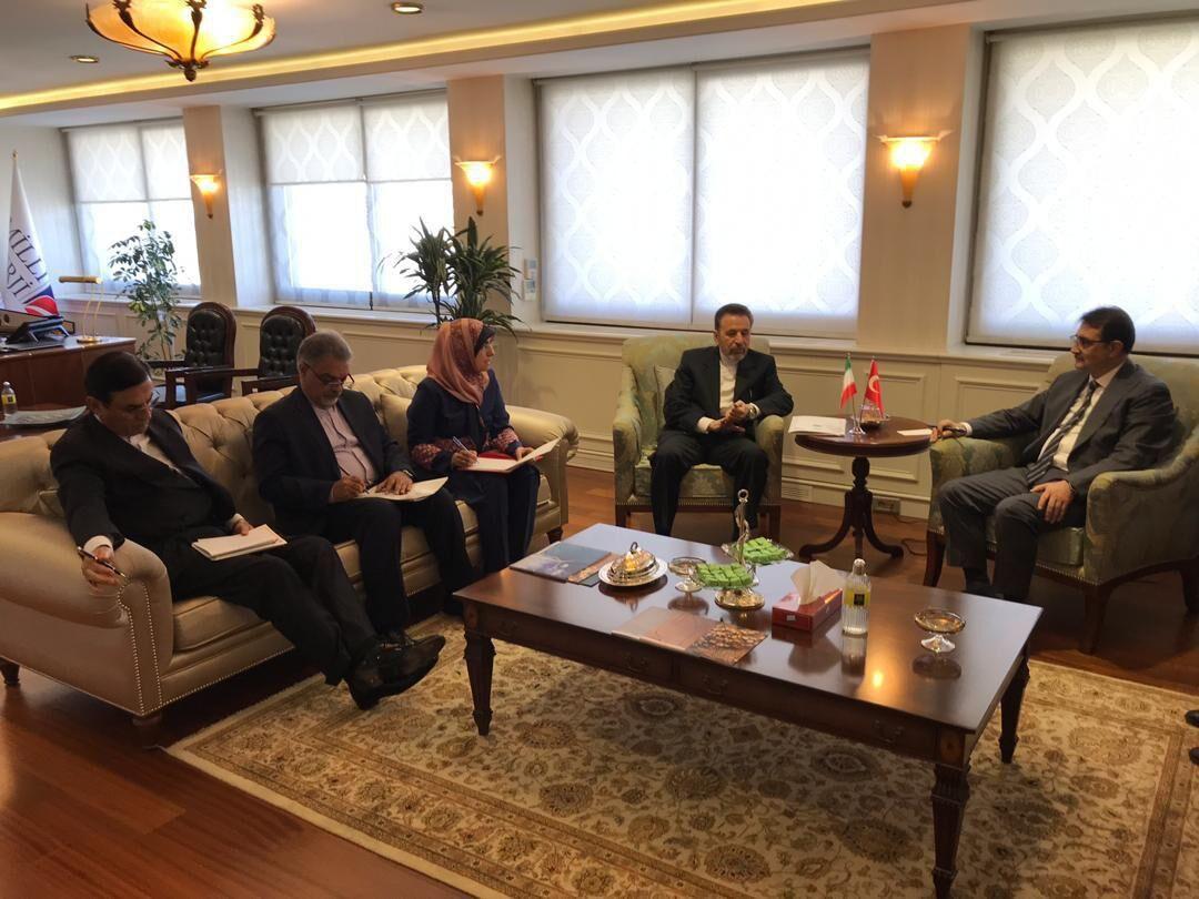 آقای واعظی با وزیر انرژی ترکیه دیدار کرد