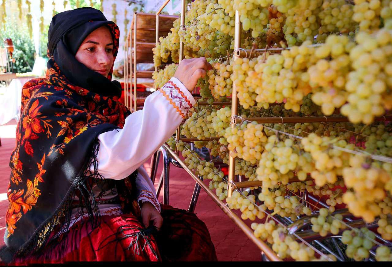 تجارت انگور در بجنورد باید گسترش یابد