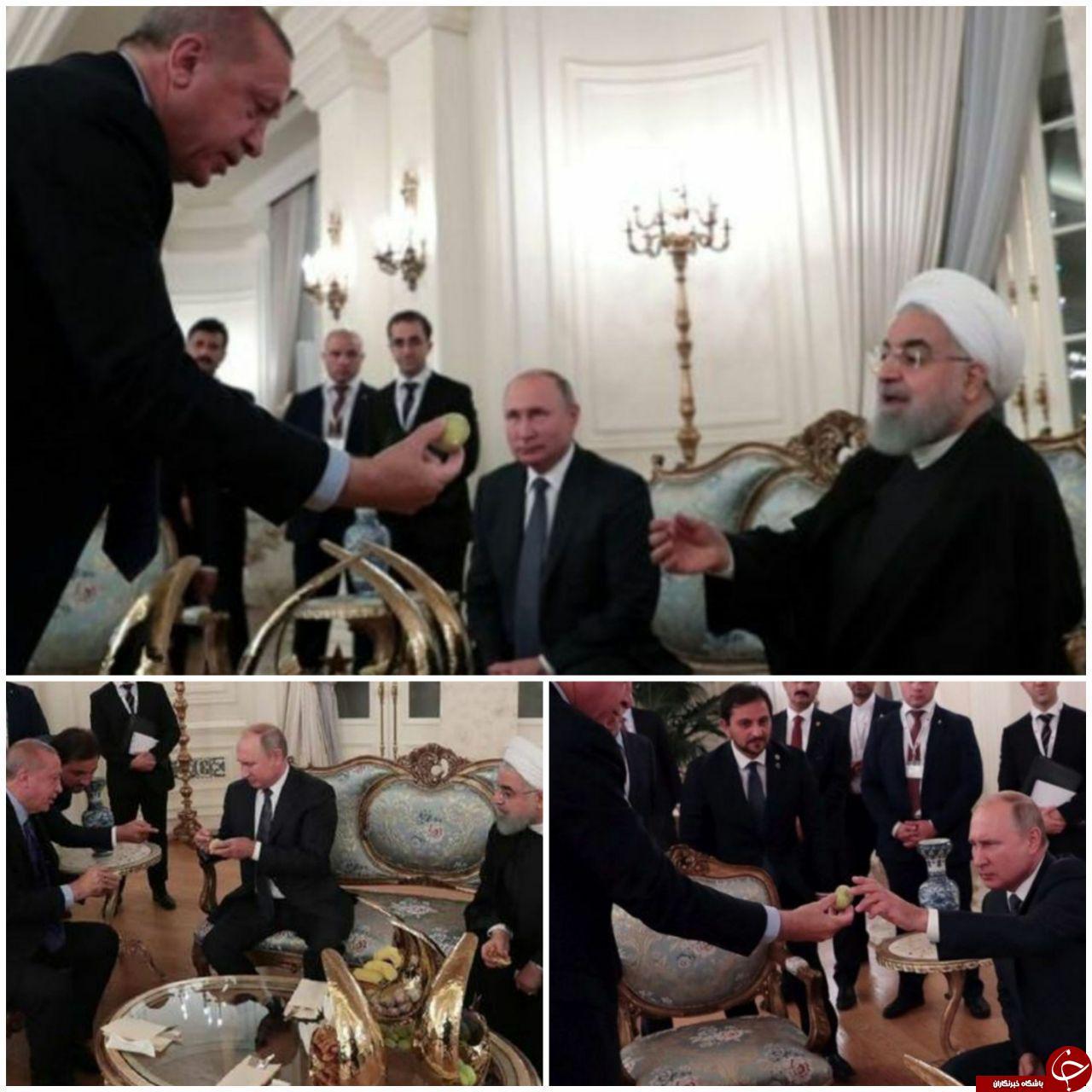 انجیر تعارف کردن اردوغان به روحانی و پوتین +عکس