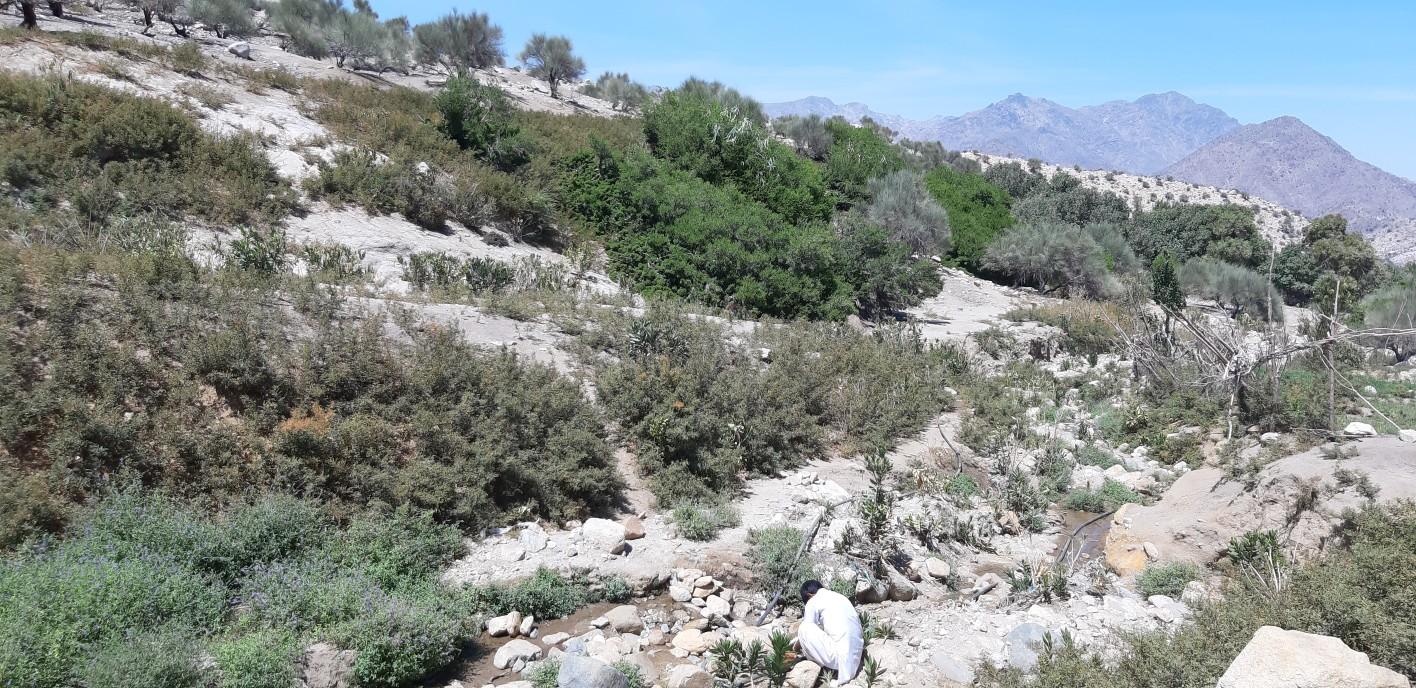 روستای زیارت شاه با گورستانی ۴۰۰ ساله و طبیعت بکر پذیرای گردشگران در دل کویر
