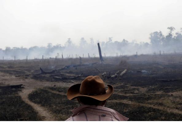 تصاویر روز: از سخنرانی ولادیمیر پوتین در ترکیه تا از بین رفتن زمینهای کشاورزی در آتش سوزی جنگلهای آمازون