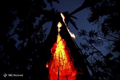 آتشسوزی در جنگلهای آمازون