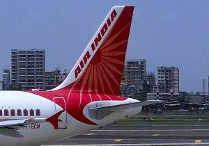 حمله زنبورها هواپیمای هندی را ۲ ساعت معطل کرد!
