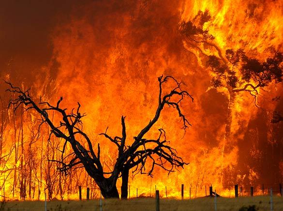 آتش موجب تخلیه صدها گردشگر از جزيره ساموس يونان شد