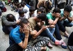 دستگیری ۱۹۸ معتاد و توزیع کننده مواد مخدر در زنجان