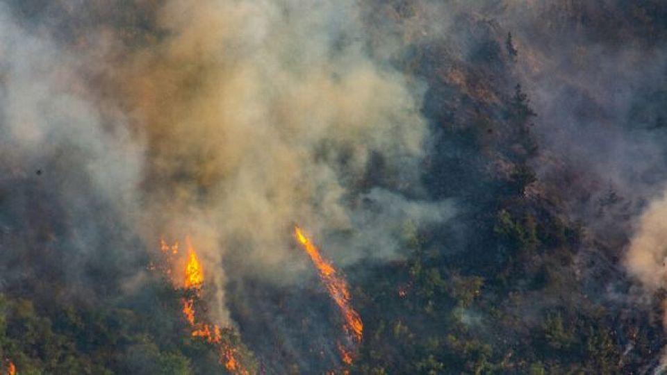 ۷۰۰ هکتار از جنگلهای ارسباران سوخت/ فرار ۴ گراز از منطقه