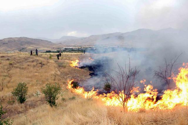 آتش سوزی ۱۰ هکتار از مراتع شهرستان طارم