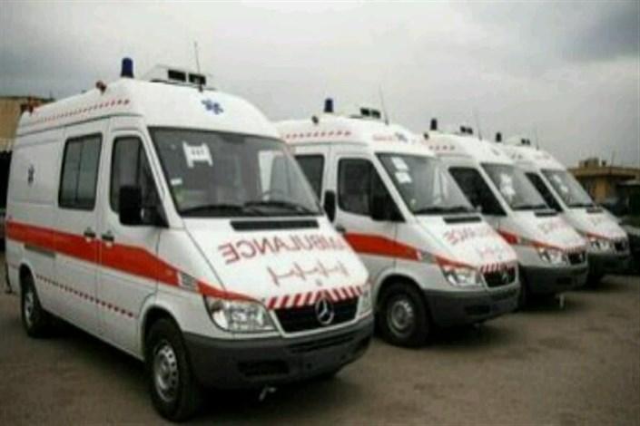 کمک رسانی زمستانی به مناطق صعب العبور زرندممکن شد