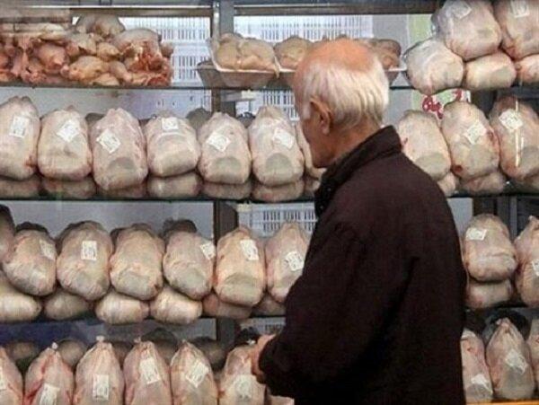 نظارت بر بازار مرغ  در ایلام