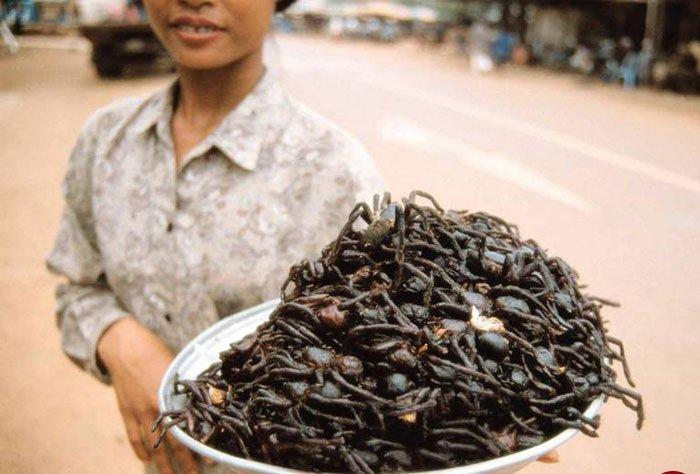 چندش آورترین غذاهای محبوب مردم سراسر جهان! + تصاویر