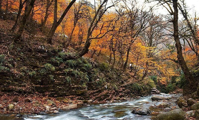 پاییز گیلان، سرد و بارانی آغاز میشود