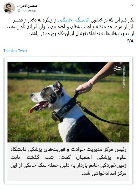 واکنش تند کاربران به حمله یک سگ عظیم الجثه خانگی به زن باردار +تصاویر