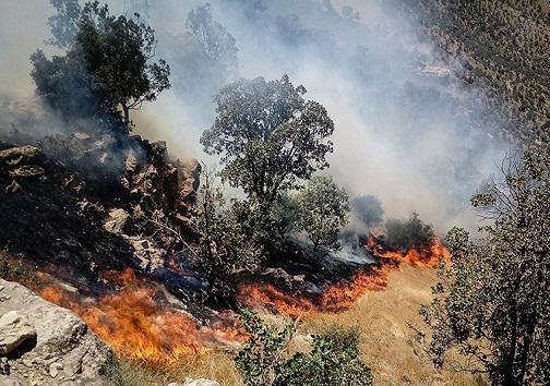 مراتع گچساران در آتش می سوزد