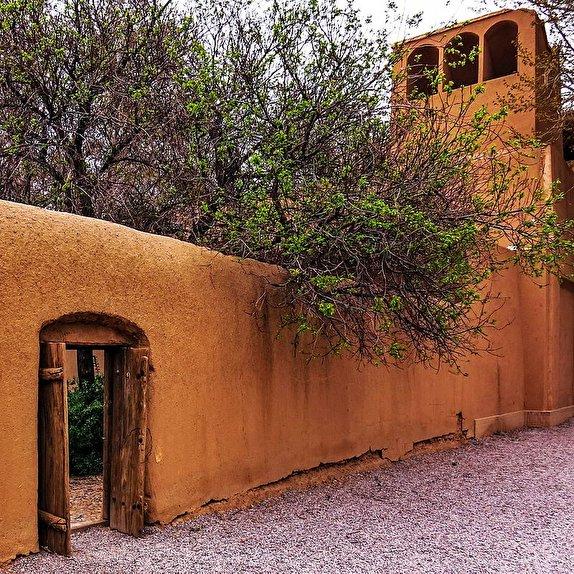 باشگاه خبرنگاران -سفری لذت بخش به باغ زیبای ایرانی/جاذبه گردشگری استان یزد را بیشتر بشناسید+تصاویر