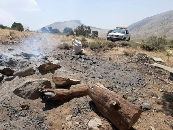دستگیری قاچاقچی حرفهای ذغال جنگلی غیر مجاز در رستم