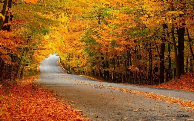 آغاز جشن رنگها در استقبال زمینیان از اعتدال پاییزی
