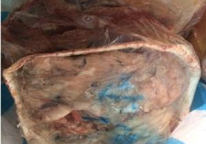 کشف و ضبط بیش از ۱۰۰ کیلوگرم گوشت فاسد در مهاباد