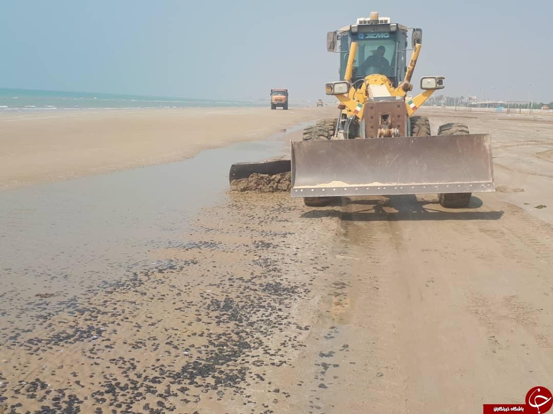 لکههای نفتی هنوز سرزمین مرجانها را رها نکردهاند