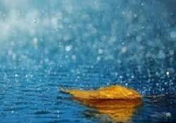 خبرنگار: محبی/آغاز عمده بارشهای سال زراعی جدید از آبان / پاییز نرمالی را پیشرو خواهیم داشت