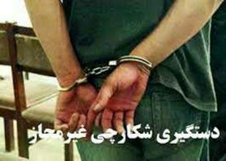 دستگیری ۷۱۱ متخلف شکار و صید در فارس