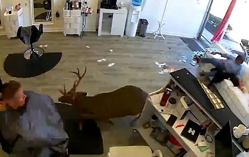 ترس و دلهره وحشتناکی که در آرایشگاه به جان مشتریان افتاد+فیلم