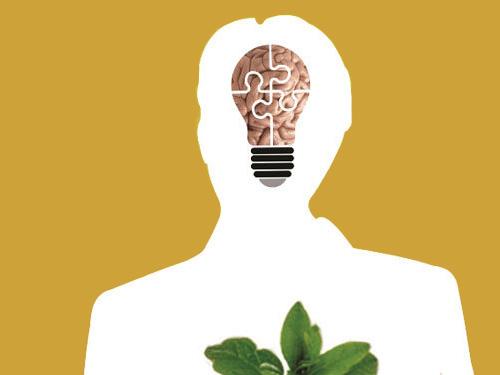 بنیانهای علوم انسانی در ایران در معرض خطر بنیادین/ علوم انسانی در جامعه ما ارزش ندارد