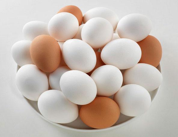تولید ۱۸ هزار و ۵۰۰ تن تخم مرغ در استان همدان/فراوری تخم مرغ در ۲ واحد صنایع تبدیلی