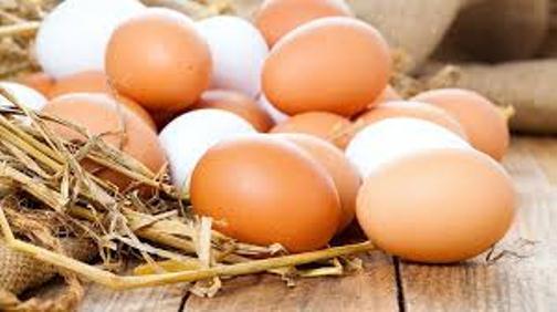 برگزاری مراسم روز جهانی تخم مرغ دراستان