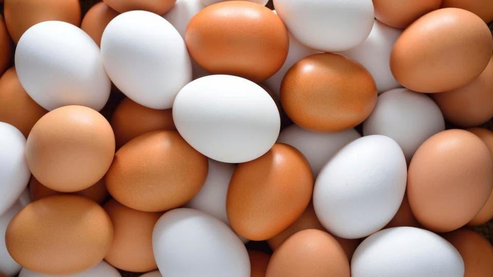 ایران پنجمین تولید کننده تخممرغ در آسیا است/باورهای غلط ذرباره کلسترل تخم مرغ