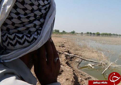 یکصد و ۵۰ هکتار زمین کشاورزان حلاف، همچنان غرق در سیلاب / دوراهی تامین نان یا گازوئیل