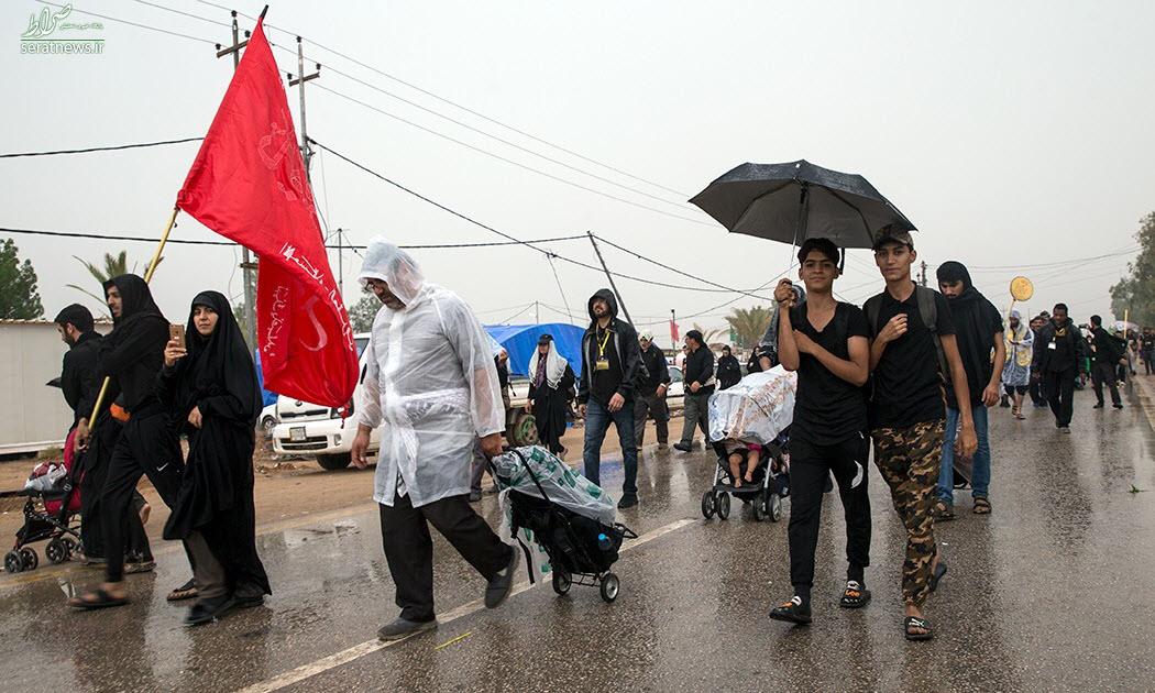 بارش باران در مسیر نجف به کربلا و پیاده روی اربعین + فیلم