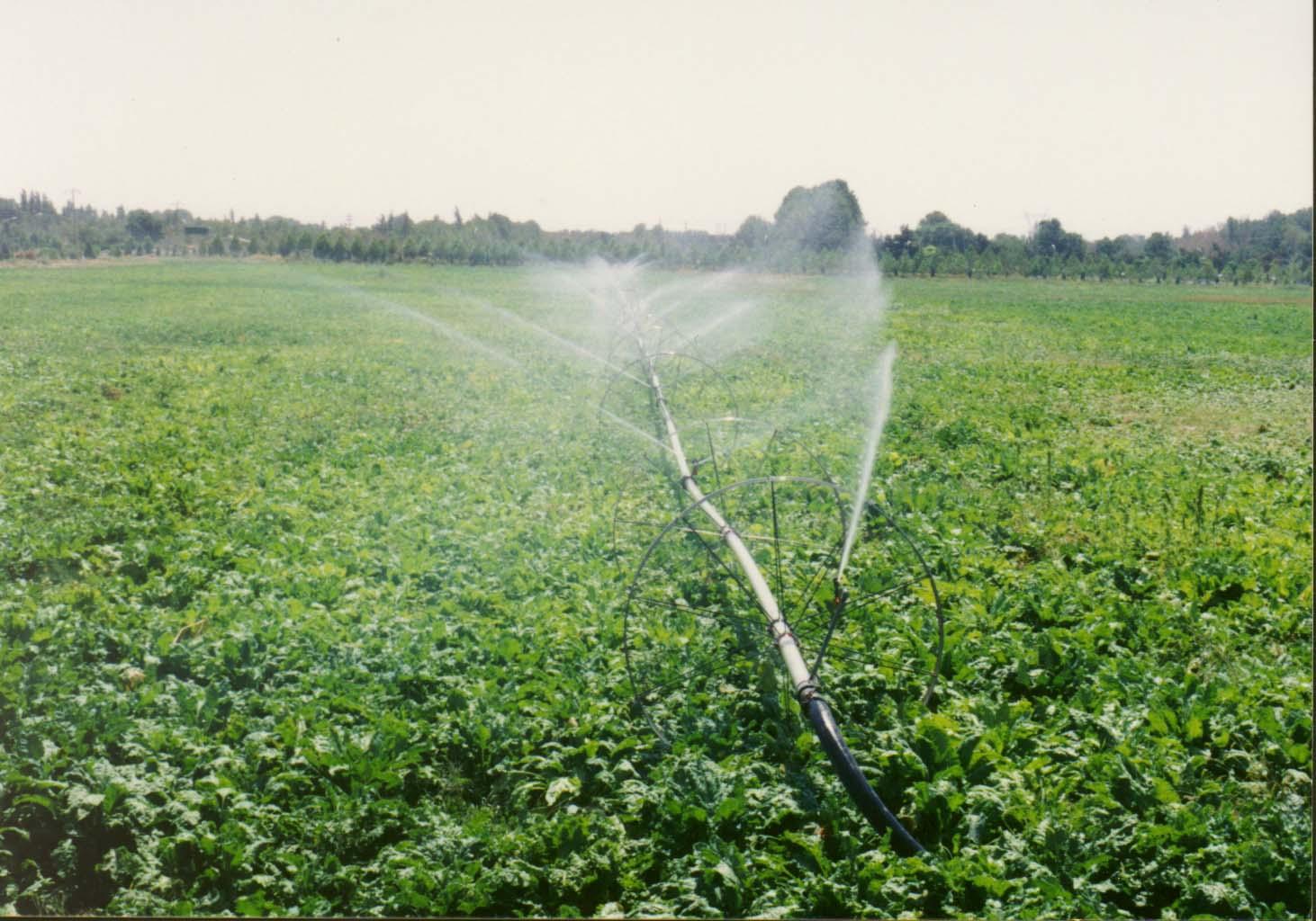 اجرای ۶۰۰هکتار سیستم نوین آبیاری در اراضی کشاورزی چابهار