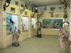 بازدید از موزه تاریخ طبیعی زنجان، فردا,۱۹ مهرماه رایگان است