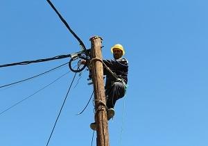 کل شبکه برق دلیجان کابل خود نگهدار شد