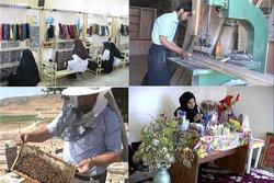 زنجان،رتبه نخست کاهش بیکاری در کشور