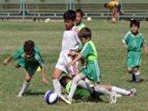 باشگاه خبرنگاران -کشف استعدادهای درخشان ورزشی از سراسر خراسان رضوی در اردوی استعداد یابی فوتبال در مشهد