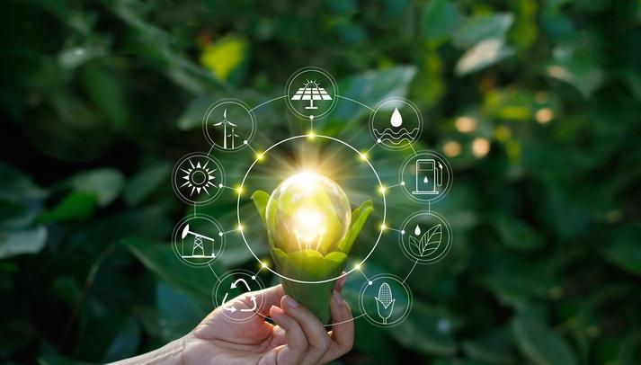 پارک های علم و فناوری در حوزه مدیریت سبز