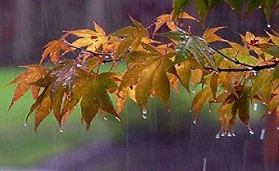 باشگاه خبرنگاران -بارش باران از بعدازظهر امروز / کاهش ۵ تا ۱۰ درجهای دمای هوا در استان قزوین