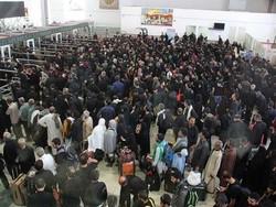 تردد ۲۷۰ هزار زائر در مرز مهران