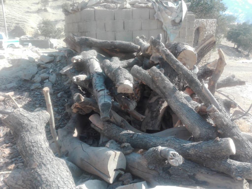 امحاء ۶ کوره ذغال غیر مجاز در رستم