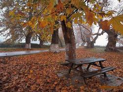 شب سرد پاییزی در انتظار زنجانی ها