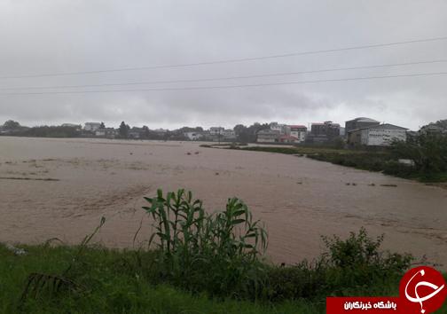 بارش شدید باران در گیلان  موجب خسارت شد/تخریب شدن چند پل بر اثر بارش شدید+ فیلم و تصاویر