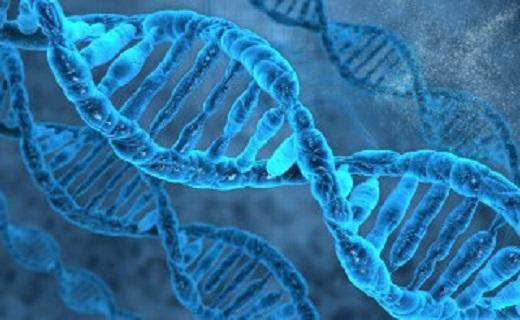 ارتباط بیماریهای پیچیده با ژنتیک/ عوارضی که هزینههای هنگفتی را به نظام سلامت کشور وارد میکند