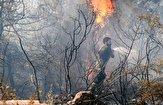 باشگاه خبرنگاران -وقوع آتشسوزی در لبنان به دنبال افزایش دمای هوا+ تصاویر
