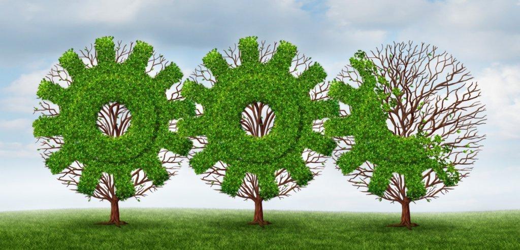 باشگاه خبرنگاران -برگزاری همایش بینالمللی مدیریت سبز در سال آینده