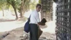 صحنهای عجیب در خیابانهای دهلی هند! + فیلم