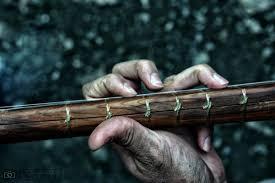 موسیقی مقامی بخشی از هویت فرهنگی دیار خورشید/دوتار هنوز نفس میکشد