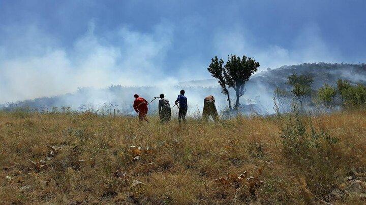 جامه سیاه بر تن طبیعت سقز / ۸۰ درصد از آتش سوزیها عمدی است