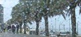 باشگاه خبرنگاران -رگبار پراکنده در نقاط جنوبی و شرقی بوشهر بارید